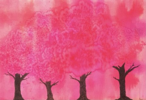 Pink forest 1